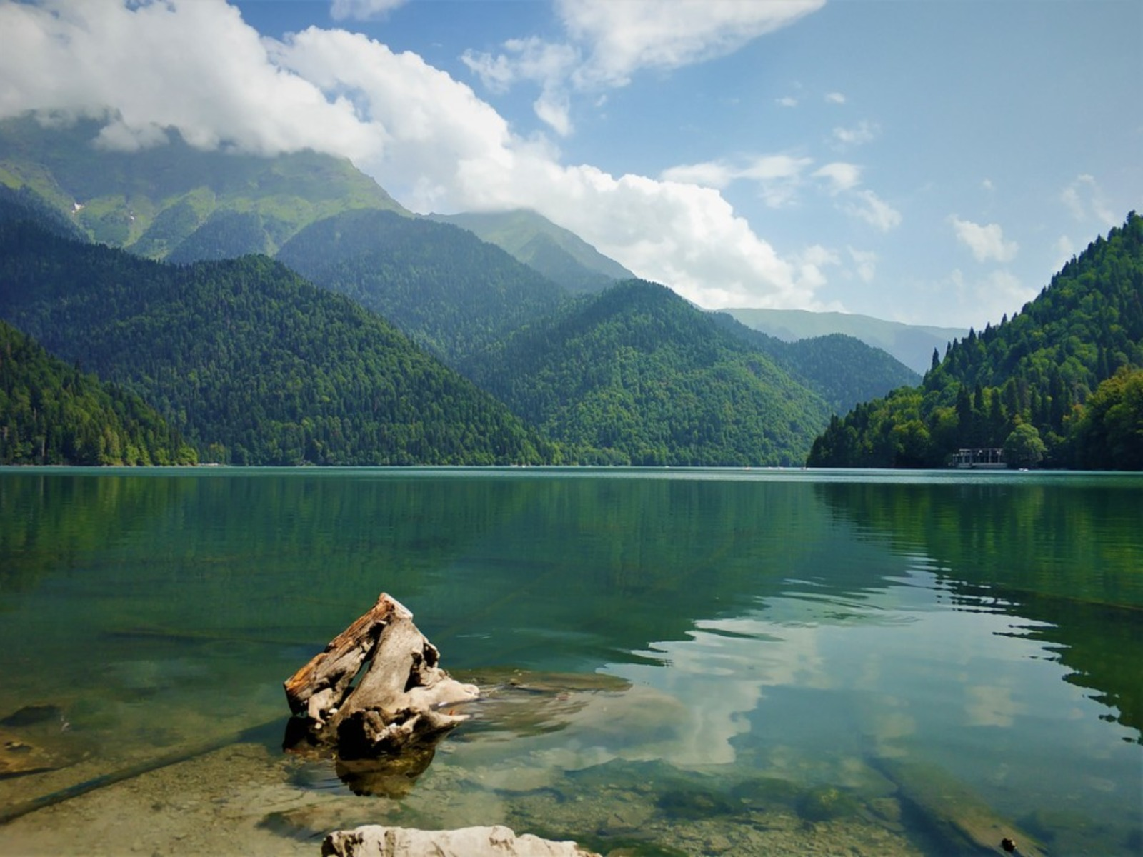 Рицинский реликтовый национальный парк в Абхазии